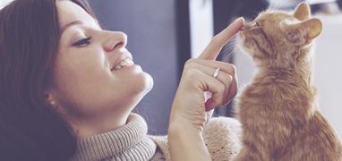 Hvad gør Happy Cat så unikt?